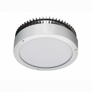 NEW ARRIVAL ROUND LED CANOPY LIGHTS WITH ETL AND DLC